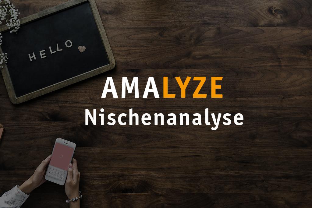 AMALYZE Nischenanalyse